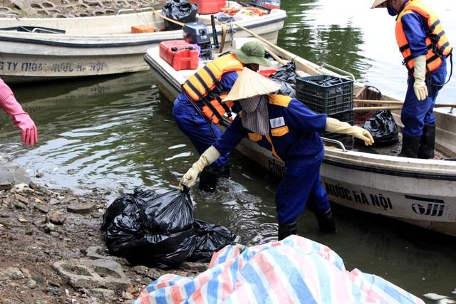 Hà Nội: Cá chết hàng loạt bốc mùi hôi thối trên hồ Trúc Bạch - 2