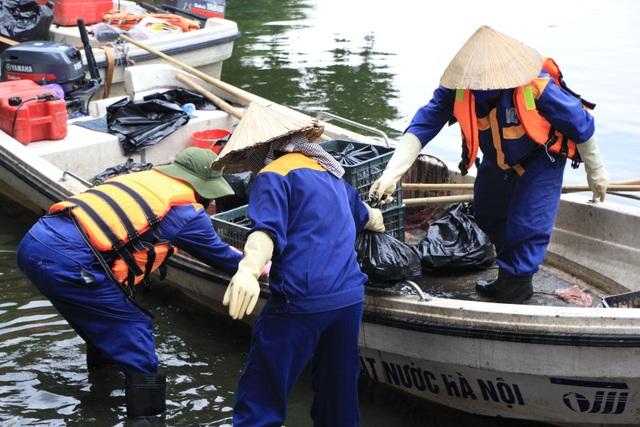 Hà Nội: Cá chết hàng loạt bốc mùi hôi thối trên hồ Trúc Bạch - 11