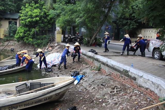 Hà Nội: Cá chết hàng loạt bốc mùi hôi thối trên hồ Trúc Bạch - 8