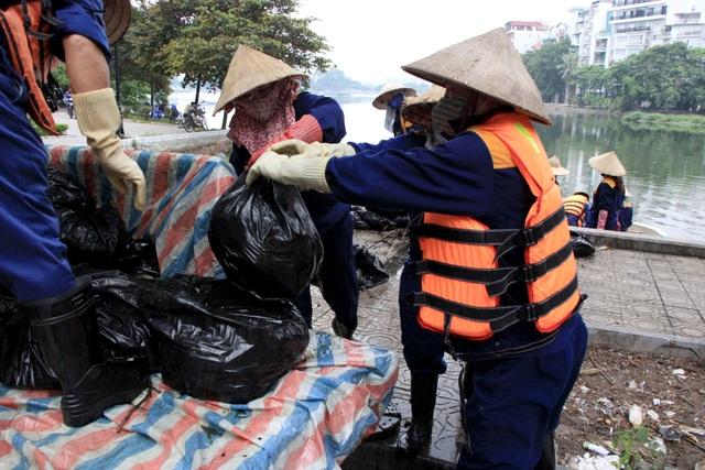 Hà Nội: Cá chết hàng loạt bốc mùi hôi thối trên hồ Trúc Bạch - 10