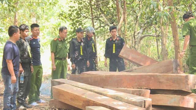 Mật phục 5 tháng, công an mới bắt quả tang được nhóm lâm tặc - 2