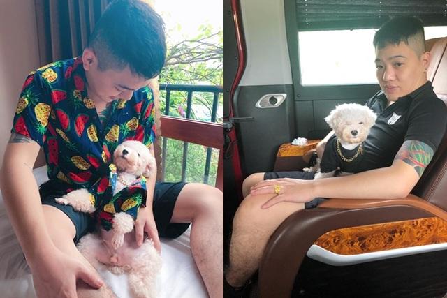 """Chú chó Hà Nội gây """"sốt"""" vì gu thời trang sành điệu, tạo dáng chuyên nghiệp như """"fashionista"""" - 3"""
