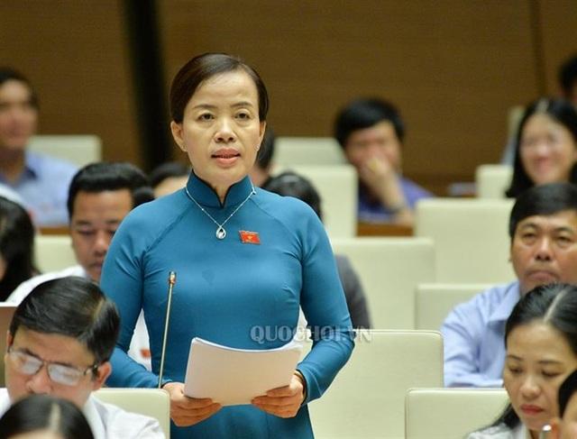 Bộ TN-MT lên tiếng việc cấp hàng ngàn hecta đất xây chùa Bái Đính, Tam Chúc - 1
