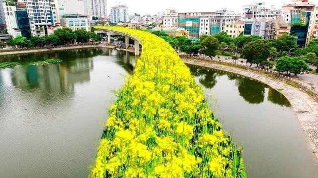Bất ngờ hình ảnh chế đường sắt trên cao Cát Linh - Hà Đông thành con đường hoa cải - 2