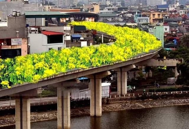 Bất ngờ hình ảnh chế đường sắt trên cao Cát Linh - Hà Đông thành con đường hoa cải - 1