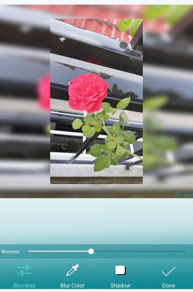 Tuyệt chiêu tạo hiệu ứng chụp ảnh xóa phông chuyên nghiệp trên smartphone - 8