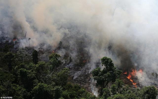 Bức ảnh phản ánh tình trạng hỏa hoạn khủng khiếp tàn phá lá phổi xanh Amazon - 4