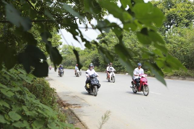 Nhìn từ trên cao rừng tái sinh suốt 24km dọc đại lộ Thăng Long - 12