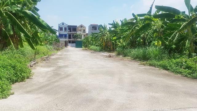 """UBND thành phố Ninh Bình quy hoạch """"đất công ích"""" rồi """"phân lô bán nền""""! - 7"""