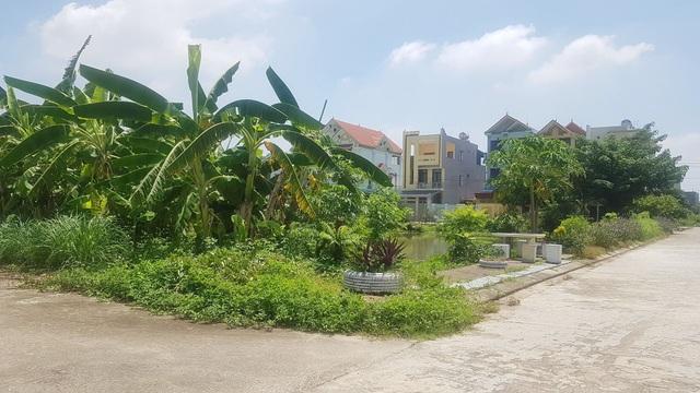 """UBND thành phố Ninh Bình quy hoạch """"đất công ích"""" rồi """"phân lô bán nền""""! - 4"""