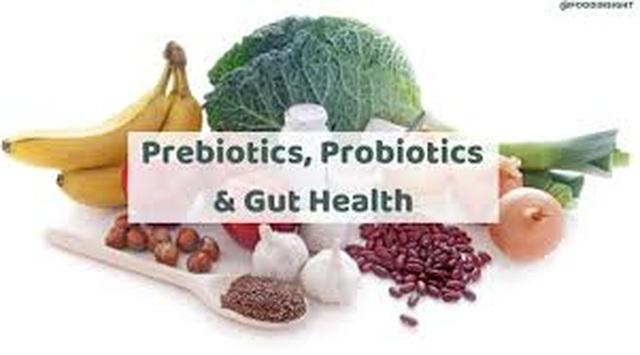 Hệ sinh vật trong đường ruột ảnh hưởng đến sức khỏe như thế nào? - 1