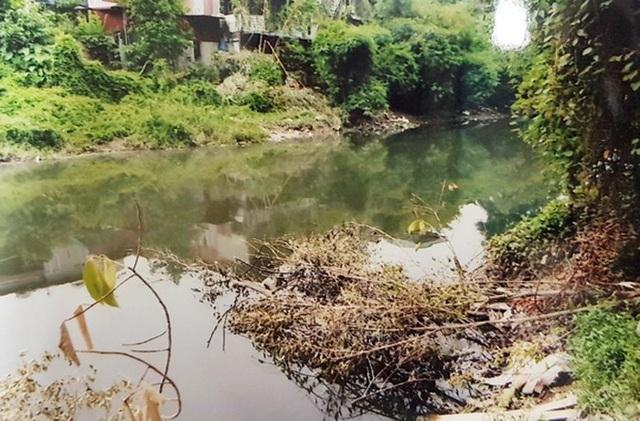 Phi tang xác bạn nghiện xuống sông Nhuệ - 2