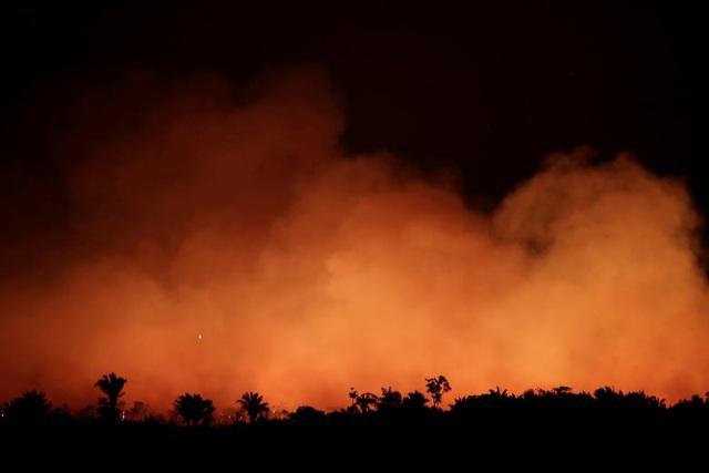 Ảnh: Giật mình trước mức độ cháy rừng ở Amazon - lá phổi của hành tinh - 1