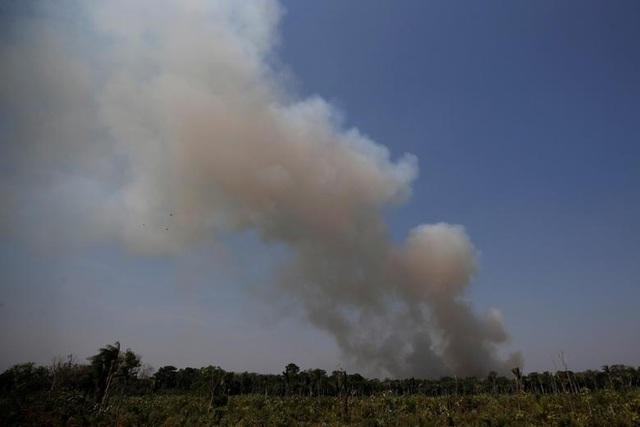 Ảnh: Giật mình trước mức độ cháy rừng ở Amazon - lá phổi của hành tinh - 11