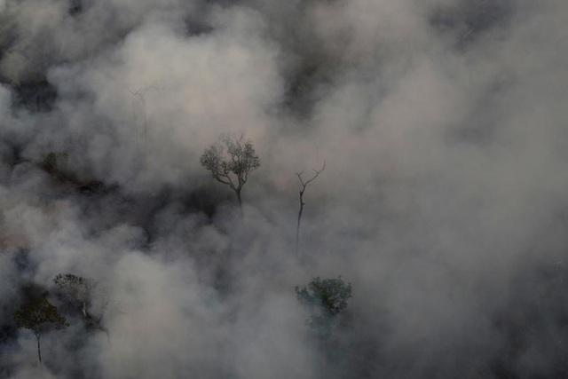 Ảnh: Giật mình trước mức độ cháy rừng ở Amazon - lá phổi của hành tinh - 15