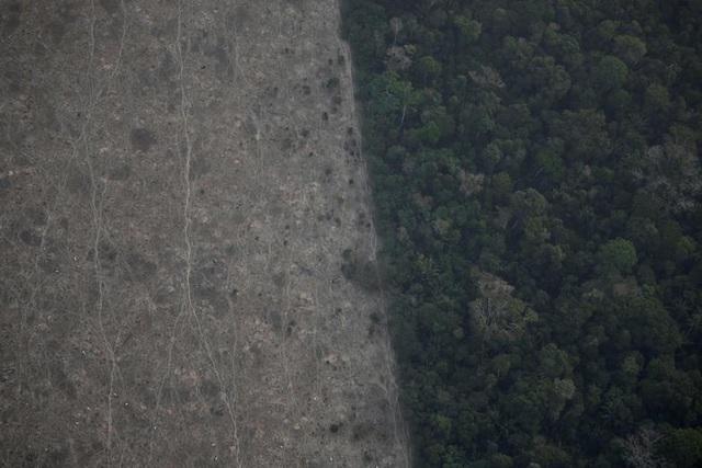 Ảnh: Giật mình trước mức độ cháy rừng ở Amazon - lá phổi của hành tinh - 16