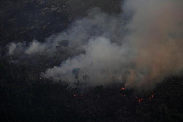 Ảnh: Giật mình trước mức độ cháy rừng ở Amazon - lá phổi của hành tinh - 17