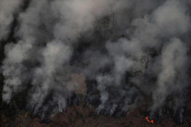 Ảnh: Giật mình trước mức độ cháy rừng ở Amazon - lá phổi của hành tinh - 2