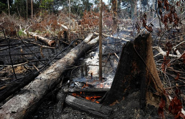 Ảnh: Giật mình trước mức độ cháy rừng ở Amazon - lá phổi của hành tinh - 6