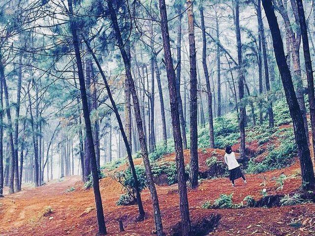 """Không cần đi xa, ngay gần Hà Nội cũng có điểm cắm trại """"sống ảo"""" tuyệt đẹp cho dịp nghỉ lễ - 3"""