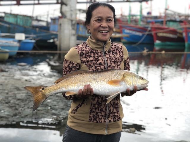Thêm cặp cá nghi sủ vàng nặng 7kg sa lưới trên sông Loan - 2