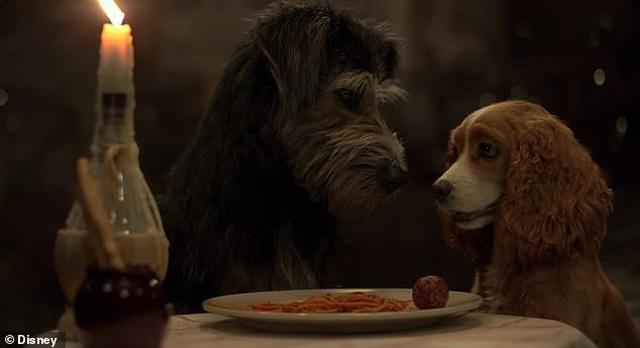 """Câu chuyện có thật về chú chó lang thang suýt mất mạng trở thành """"ngôi sao điện ảnh"""" - 5"""