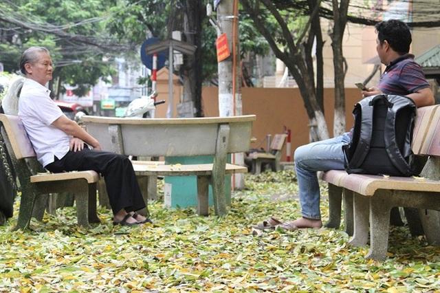 Hàng cây sưa quý ở Hà Nội bất ngờ rụng lá sau khi từ chối bán - 5