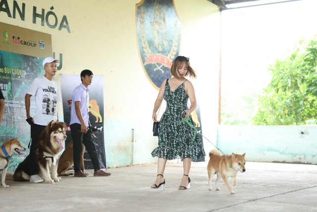 """Nhà sản xuất lên tiếng khi bị phản đối việc chọn chó Nhật đóng phim """"Cậu Vàng"""" - 2"""