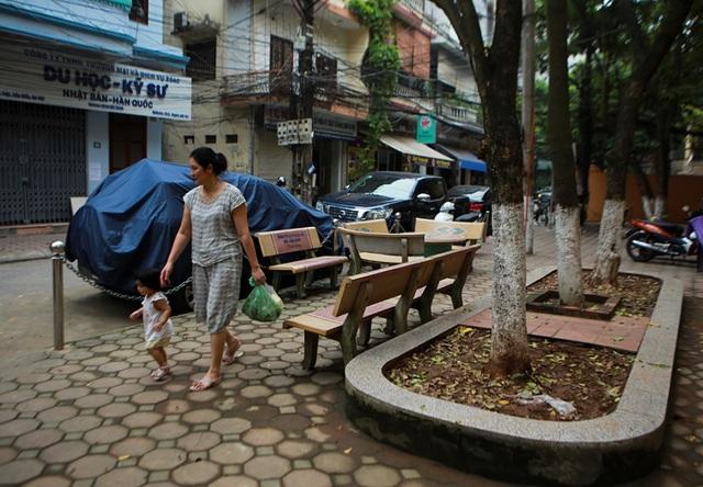 Cả khu dân cư Hà Nội cứu 3 cây sưa quý nghi bị bỏ độc - 1