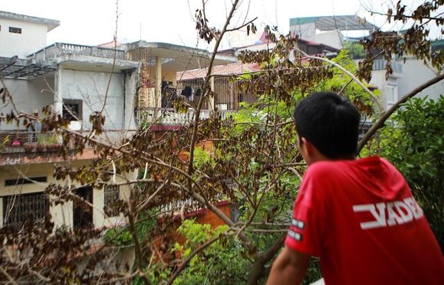 Cả khu dân cư Hà Nội cứu 3 cây sưa quý nghi bị bỏ độc - 10