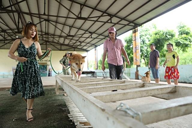 """Nhà sản xuất lên tiếng khi bị phản đối việc chọn chó Nhật đóng phim """"Cậu Vàng"""" - 3"""