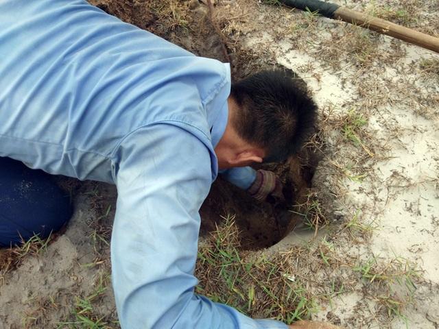 Theo chân thợ săn đào cát tìm hang, truy bắt thực phẩm tình yêu - 8