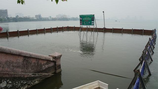 Cá chết nổi bốc mùi hôi thối ở Hồ Tây, hồ Hồ Đắc Di - 11