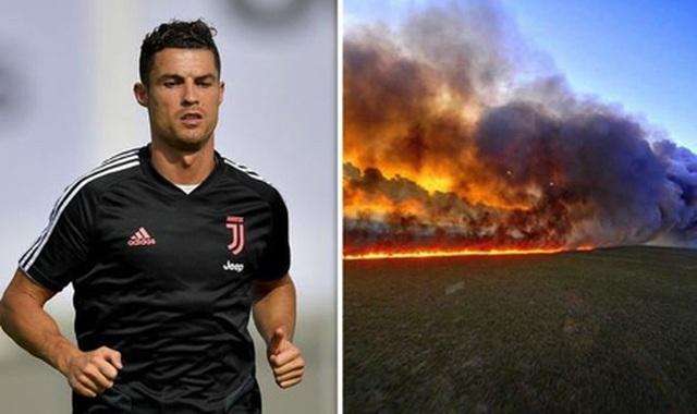 Vận động vì môi trường nhưng C.Ronaldo lại bị bóc mẽ đăng nhầm ảnh