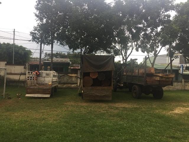 Bắt giữ xe ô tô vận chuyển 30 hộp gỗ lậu - 3