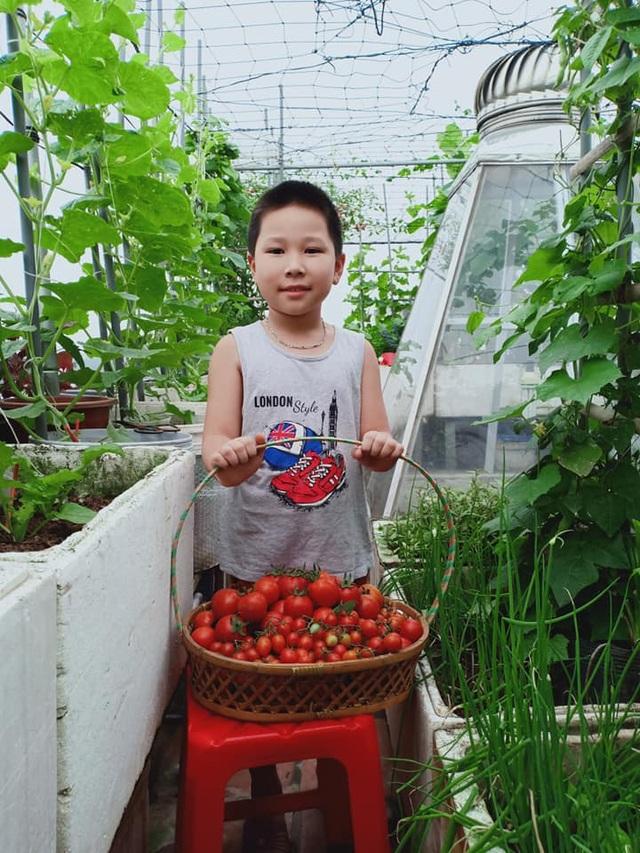 """Vườn dưa sai trĩu quả, """"đếm mỏi tay"""" trên sân thượng của mẹ đảm Hà Nội - 13"""