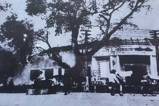 """Trưng bày chuyên đề """"Bác Hồ với Thanh Hóa - Thanh Hóa 50 năm thực hiện Di chúc của Bác"""" - 3"""