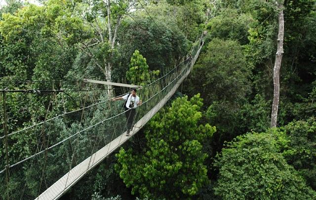Du lịch Đông Nam Á không nên bỏ qua những điểm đến hấp dẫn này - 10