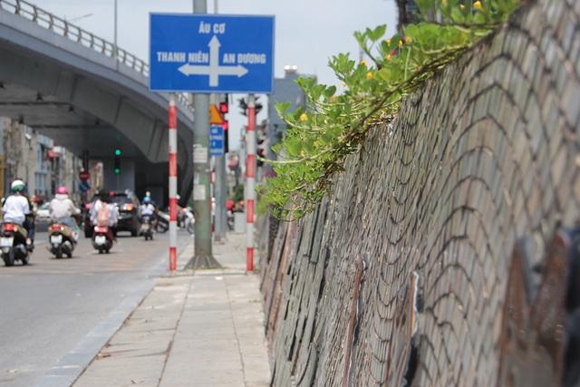 Đường tranh gốm sứ kỷ lục thế giới ở Hà Nội có thể được nối dài - 3