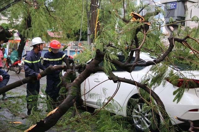 Hà Nội: Cây xanh đổ ngổn ngang, chèn bẹp ô tô, đè chết người trong giông lốc khủng - 5