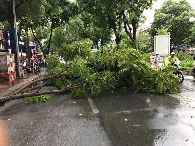 Hà Nội: Cây xanh đổ ngổn ngang, chèn bẹp ô tô, đè chết người trong giông lốc khủng - 3