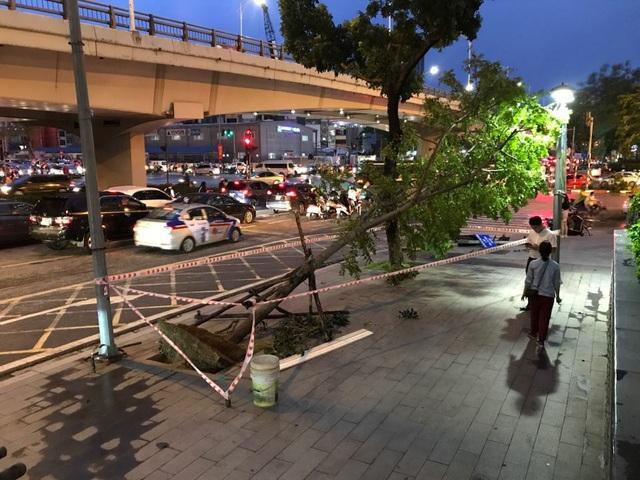 Hà Nội: Cây xanh đổ ngổn ngang, chèn bẹp ô tô, đè chết người trong giông lốc khủng - 13