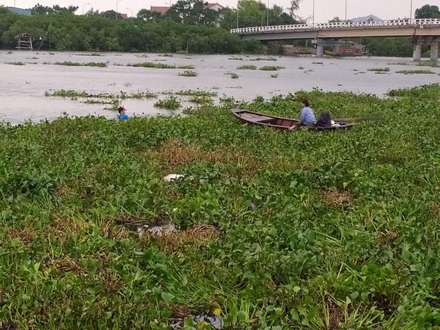 Người dân gạt bèo gánh cá đặc sản chạy mưa bão - 3