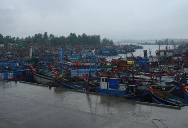 Nhiều tỉnh miền Trung hối hả chống bão - 14
