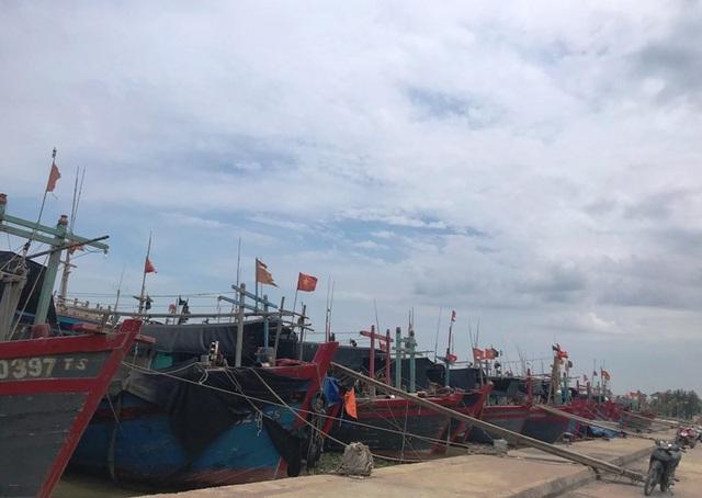 Nhiều tỉnh miền Trung hối hả chống bão - 19