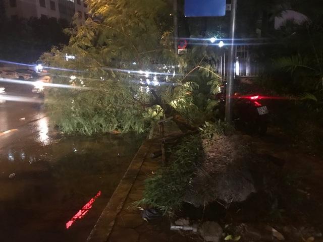 Hà Nội: Cây xanh đổ ngổn ngang, chèn bẹp ô tô, đè chết người trong giông lốc khủng - 21