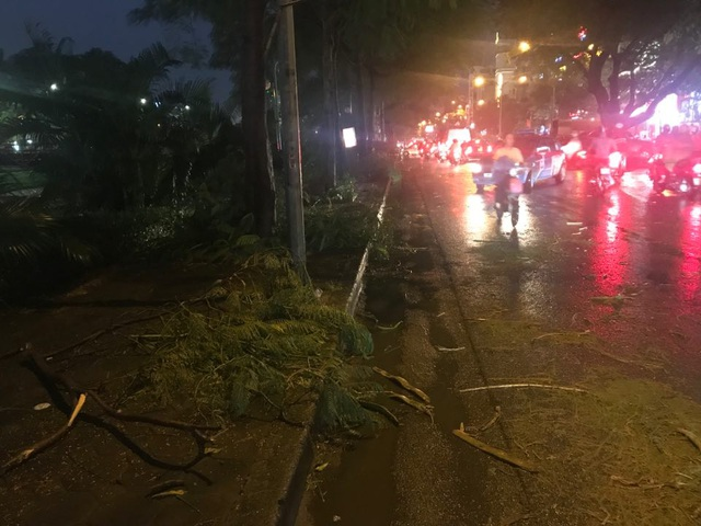 Hà Nội: Cây xanh đổ ngổn ngang, chèn bẹp ô tô, đè chết người trong giông lốc khủng - 20
