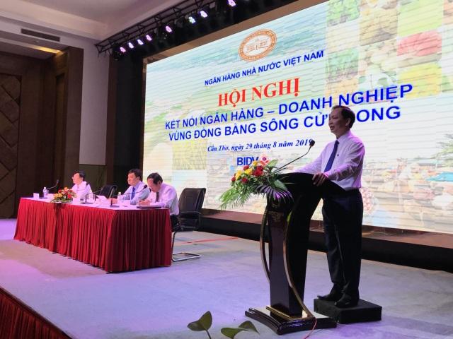 Vay vốn tại Đồng bằng sông Cửu Long và khởi nghiệp của những doanh nghiệp nghìn tỷ - 1