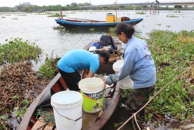 Người dân gạt bèo gánh cá đặc sản chạy mưa bão - 2