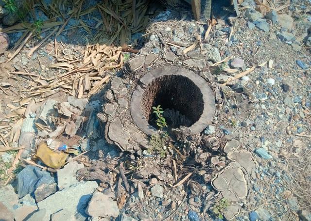 Bi hài vụ chặt cây trên đất đã mua, suýt ngồi tù: Lại phục hồi điều tra! - 5